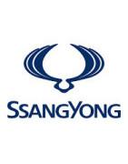 Misutonida predné rámy a nášľapy pre vozidlá SsangYong Rexton