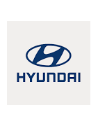 Misutonida predné rámy a nášľapy pre vozidlá Hyundai Galloper